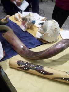 shofar conch