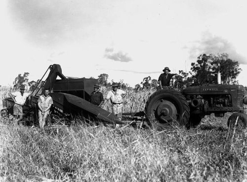 800px-farmall_tractor_pulling_a_combine_harvester_queensland_1950_5682298084-1